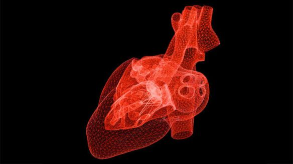 stylised heart image from sciencemag